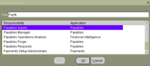 Oracle Apps User Responsibility