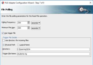 File Adapter Trigger File Option