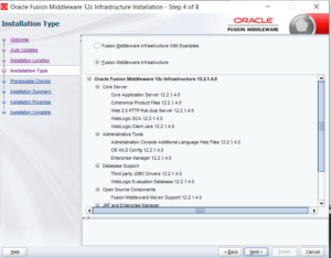 Fusion Middleware Infrastructure installation type
