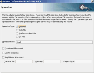 File Adapter Read Operation